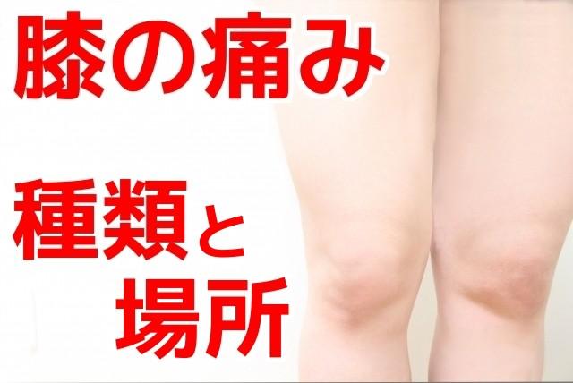 膝が痛い,膝の痛み,種類,場所,症状